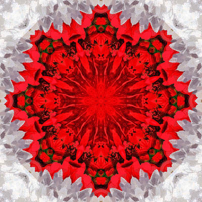 Holiday Kaleidoscope IIi Print by Dawn Currie