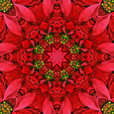 Holiday Kaleidoscope Iv Print by Dawn Currie