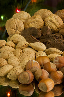 Kitchen Photograph - Holiday Nuts by Mark McKinney