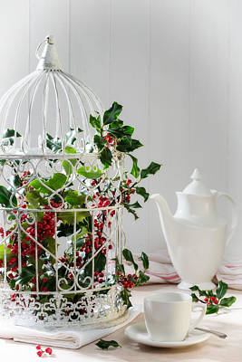 Bird Cages Photograph - Holly And Berries Birdcage by Amanda Elwell