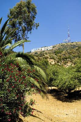 Hollywood Sign 6 Print by Micah May