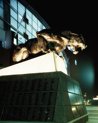 Panther Photograph - Home Of The Carolina Panthers by Mountain Dreams