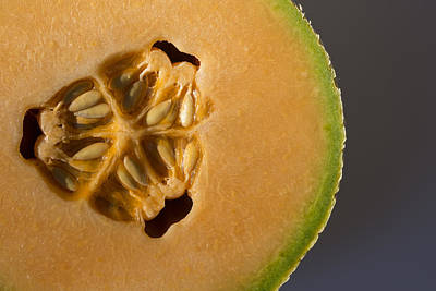 Cut In Half Photograph - Honeydew 2 by Scott Campbell