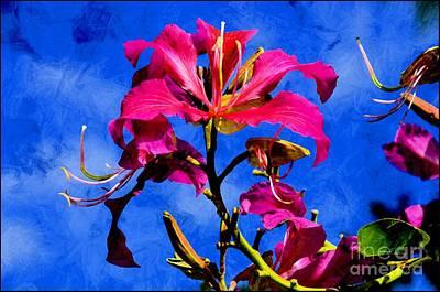 Hong Kong Mixed Media - Hong Kong Orchids by Elaine Manley