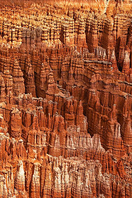 Canyon Photograph - Hoodoos Of Bryce by Andrew Soundarajan