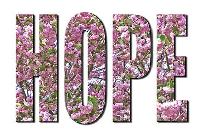Photograph - Hope In Cherry Blossoms From The Faith Hope And Love Series by Karen Stephenson