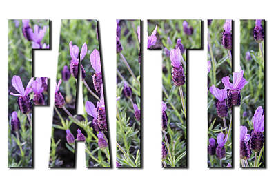 Photograph - Faith In Spanish Lavender On White From The Faith Hope And Love Series by Karen Stephenson