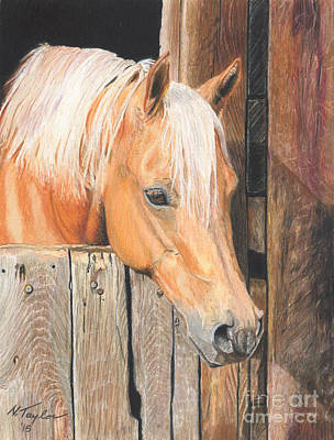 Tennessee Drawing - Hope by Nichole Taylor
