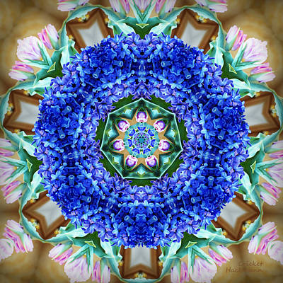 Mandala Photograph - Hope Springs Eternal by Cricket Hackmann