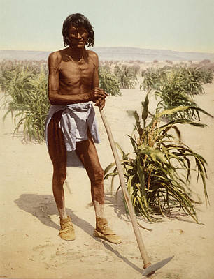 Indigenous Culture Photograph - Hopi Man With A Hoe by William Henry Jackson