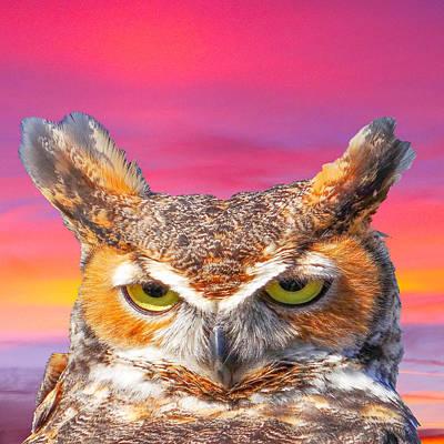 Horn Owl Original by Dennis Dugan