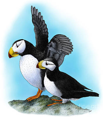 Puffin Photograph - Horned Puffins by Roger Hall