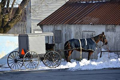 Horse And Buggy Parked Print by Tana Reiff
