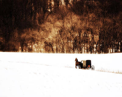 Horse And Buggy Print by Vicki Jauron