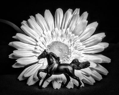 Horse And Daisy Print by Jeff  Gettis