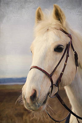 Horse Art - Beauty Is A Light Print by Jordan Blackstone