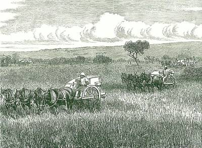 Horse-drawn Mechanical Harvesters Print by Universal History Archive/uig