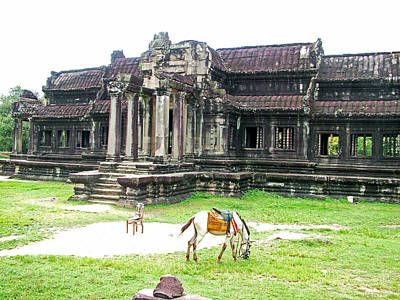Angkor Digital Art - Horse In Front Of Outer Building In Angkor Wat In Angkin Angkor Wat Archeological Park-cambodia by Ruth Hager
