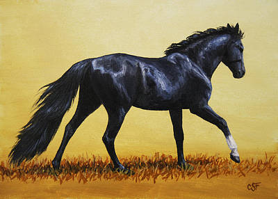 Running Painting - Horse Painting - Black Beauty by Crista Forest
