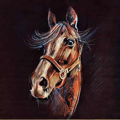 Horse Portrait  Print by Daliana Pacuraru