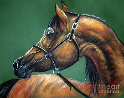 Horse Soft Pastel Print by Angel  Tarantella