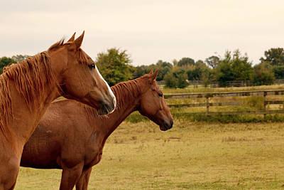 Horseback Print by Chanel Tredup