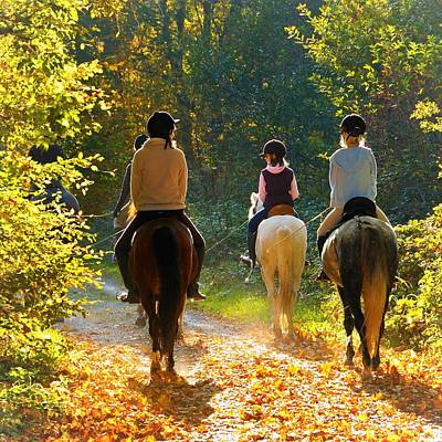 Horse Photograph - Horseback Riding In The Autumnal Forest by Matthias Hauser