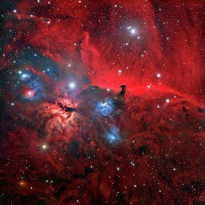 Horsehead And Flame Nebulae Print by Tony & Daphne Hallas