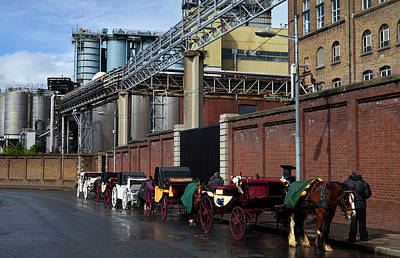 Horse And Cart Photograph - Horses And Carriages by Panoramic Images