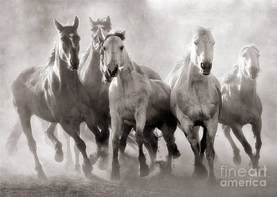 Horses And Dust Print by Heather Swan