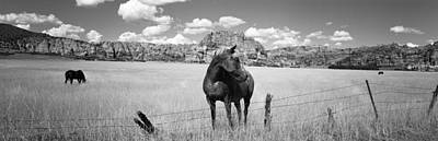 Horses Grazing In A Meadow, Kolob Print by Panoramic Images