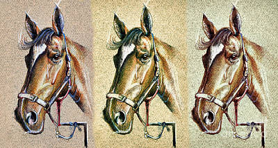 Horse Drawing - Horses Hand Drawing by Daliana Pacuraru