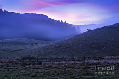 Horses In The Mist Print by Yuri Santin