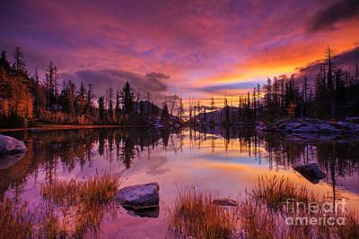 Horseshoe Lake Sunrise Reflection Print by Mike Reid