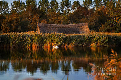 Nature Photograph - Horsey Mere On The Norfolk Broads On A Still Day In Autumn by Louise Heusinkveld