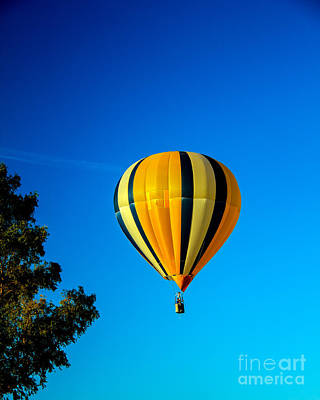 Hot Air Balloon Print by Robert Bales