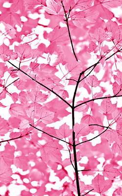 Hot Pink Leaves Melody Print by Jennie Marie Schell