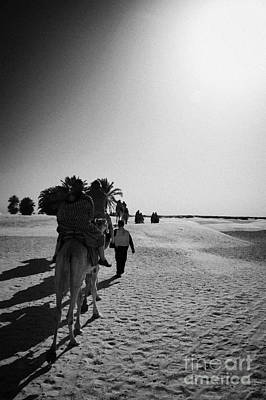 Camel Photograph - hot sun beating down on tourists taking a camel ride into the sahara desert at Douz Tunisia by Joe Fox