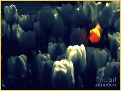 Hot Tulip Original by ARTography by Pamela Smale Williams