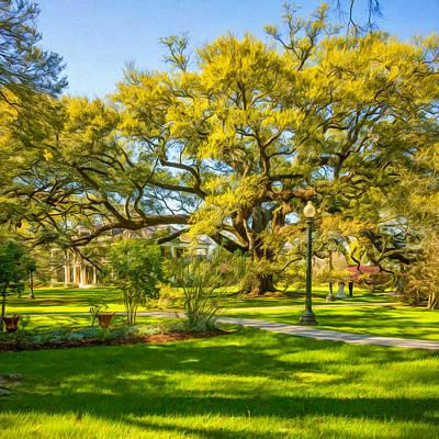Tree Photograph - Houmas House Plantation - Paint by Steve Harrington