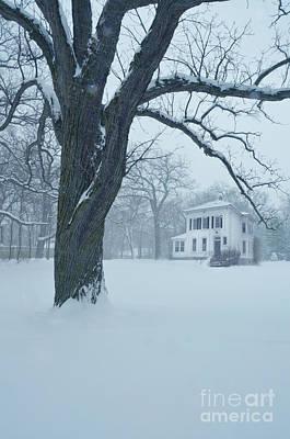 House And Big Tree In Snow Print by Jill Battaglia