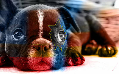 Bulldog Mixed Media - House Broken French Bulldog by Marvin Blaine