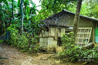 Banana Photograph - House In Green Jungle by Regina Koch