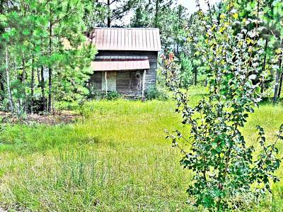 Aging Photograph - House In The Thicket by Eloise Schneider