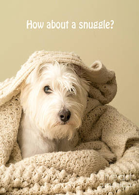 Westie Terrier Photograph - How About A Snuggle Card by Edward Fielding