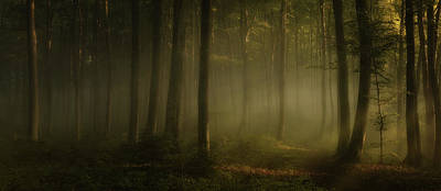 Haze Photograph - How Can Words Express The Feel Of Sunlight In The Morning by Norbert Maier