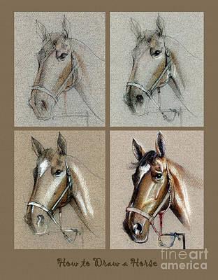 How To Draw A Horse Portrait Print by Daliana Pacuraru