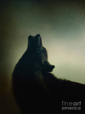 Howling Print by Margie Hurwich