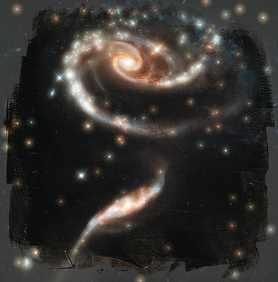 Abstract Photograph - Hubble - Rose Made Of Galaxies by Paulette B Wright