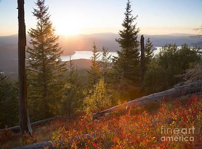 Huckleberry Blaze Print by Idaho Scenic Images Linda Lantzy